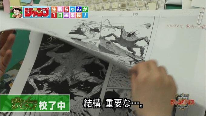 29 ジャンポリス 生駒里奈② (14)
