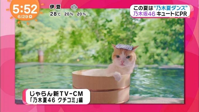 めざましテレビ じゃらん① 乃木坂46 (13)