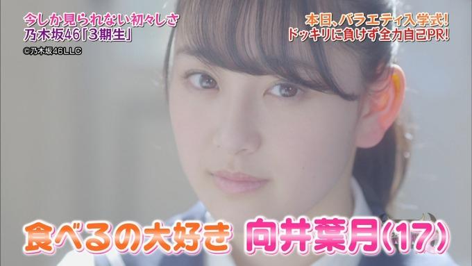 NOGIBINGO8!向井葉月 自己PR (3)