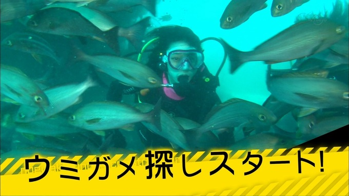 乃木坂工事中 18thヒット祈願⑤ (1)