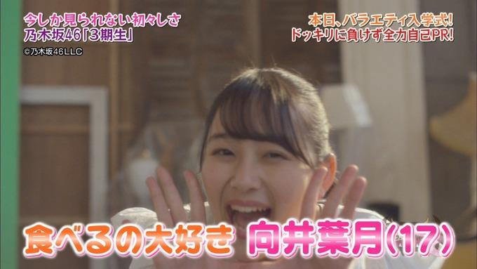 NOGIBINGO8!向井葉月 自己PR (7)