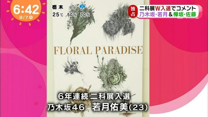 めざましテレビ 若月佑美 佐藤詩織 二科展 (6)