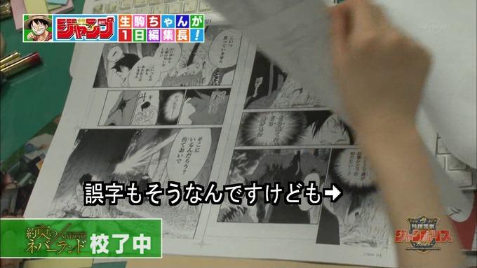29 ジャンポリス 生駒里奈② (17)