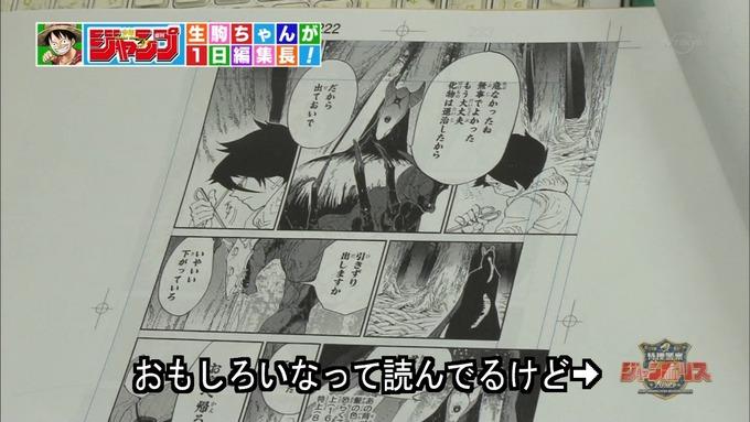 29 ジャンポリス 生駒里奈② (25)