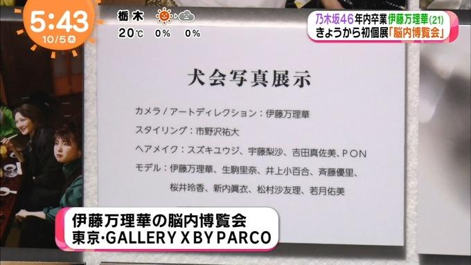 めざましテレビ 伊藤万理華 個展&卒業 (5)