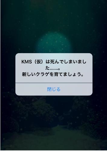 潮 ブログ3