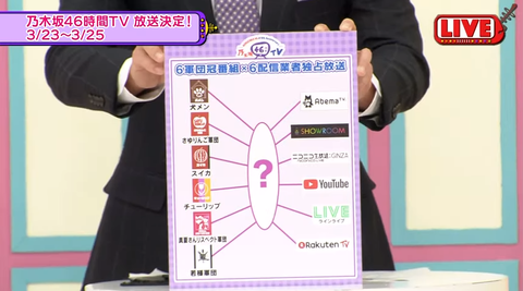 46分TV13