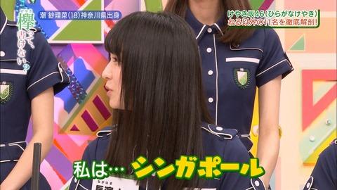 けやかけ66