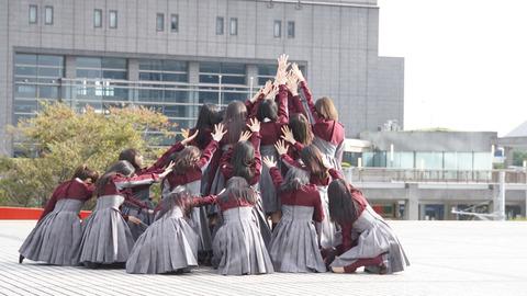 欅ちゃん集合9