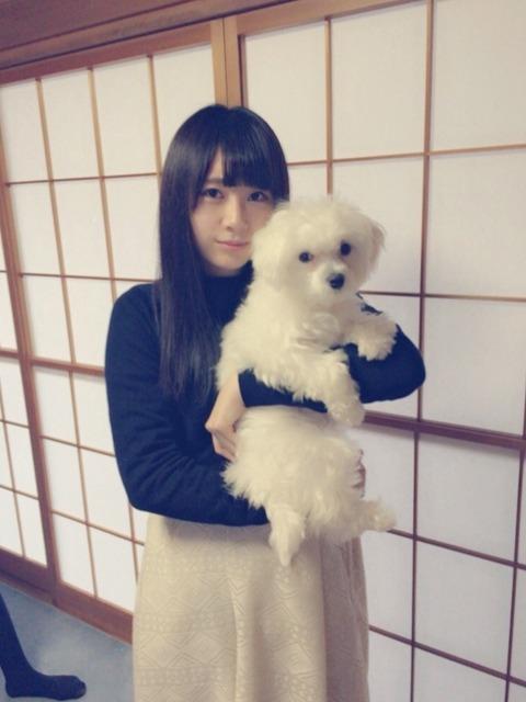 長沢 ブログ2