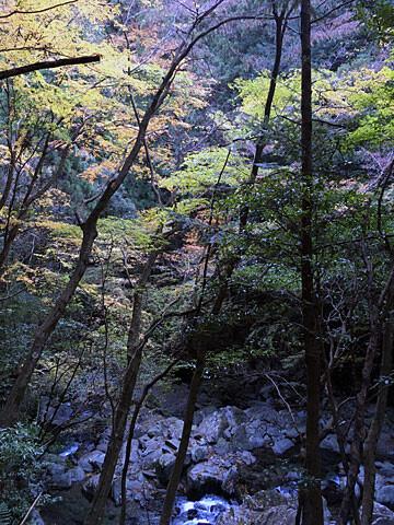 shirakura