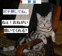 img_6_m (2)
