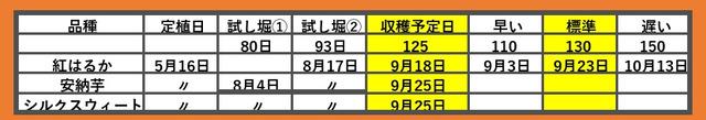 c81146ea-s