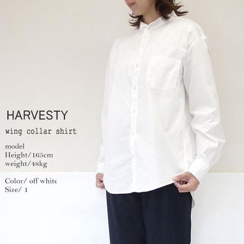 9/9(月) HARVESTY ハーベスティ A31908 ウィングカラーシャツ