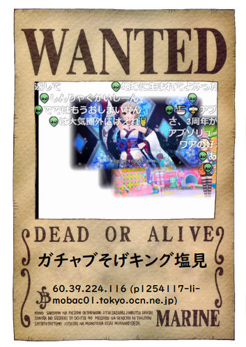 onepiece-wanted (3)