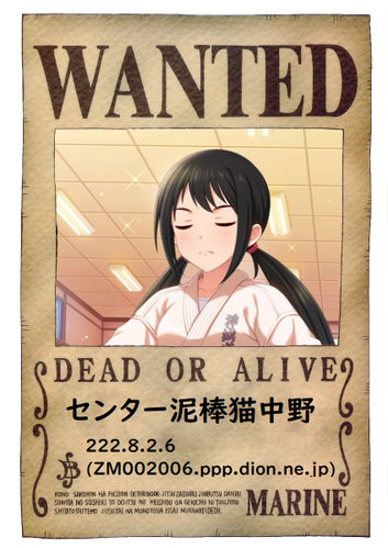 onepiece-wanted (1)