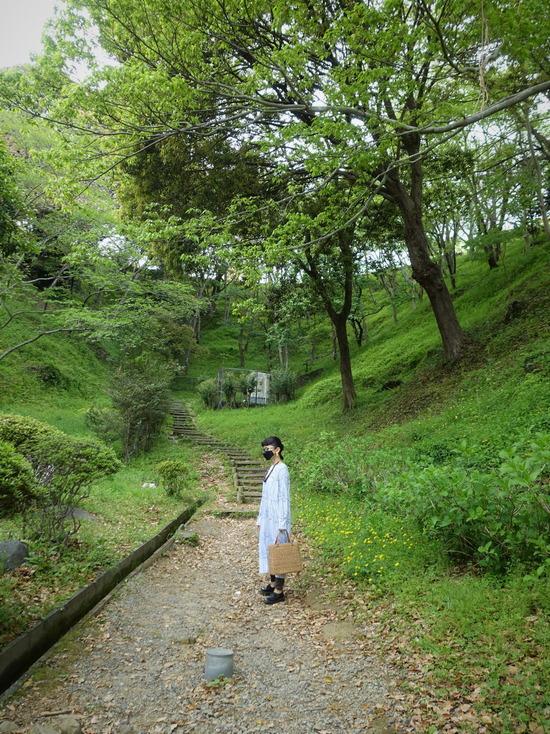 蓮華寺池公園(3)