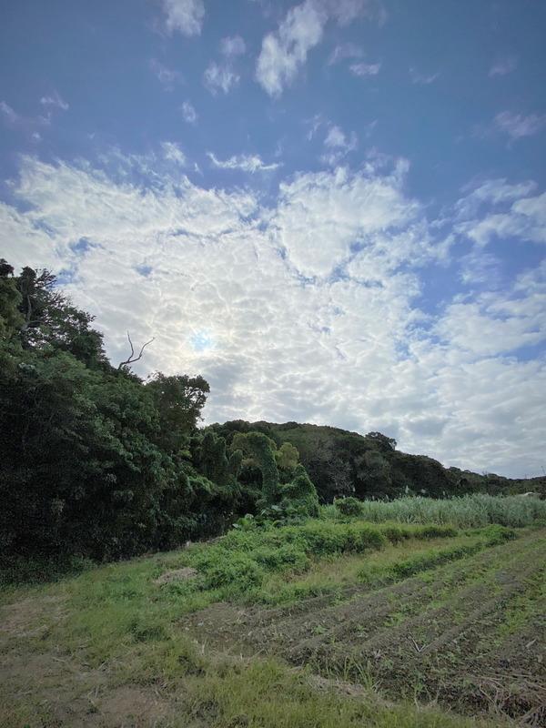 2020沖縄 (8)