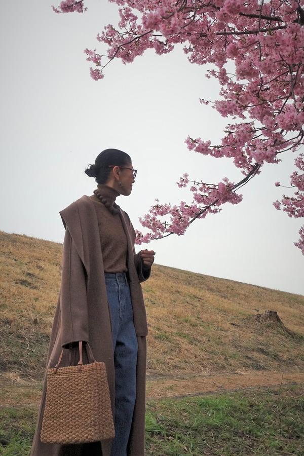 河津桜2020(4)
