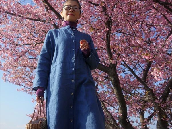 河津桜~山の手桜2020 (7)
