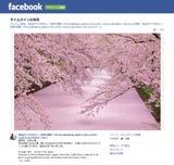 fb_hirosakipark_zekkei-315x300[1]