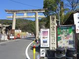京都観光の様子