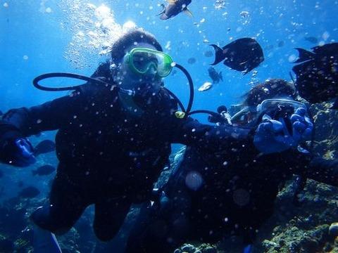 沖縄那覇家族友達同士で貸切できるダイビングショップ初めてのダイビング体験にオススメ持ち物ライセンス不要