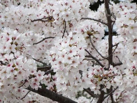 2014-04-03-15-33-31