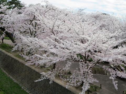 2014-04-03-15-37-11