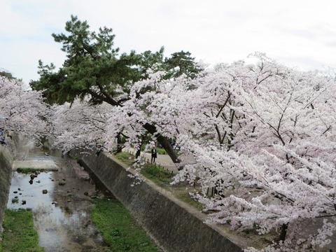 2014-04-03-15-37-39