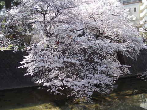 2014-04-01-15-45-26
