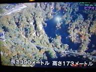 65fc0981.jpg