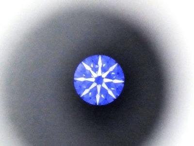 RIMG3731