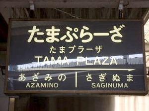 tamaplaza01