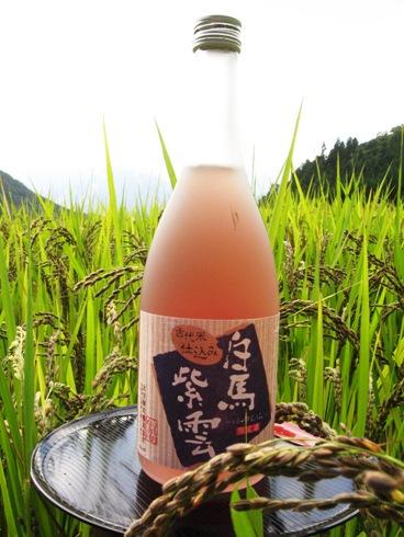 白馬紫雲・北安醸造