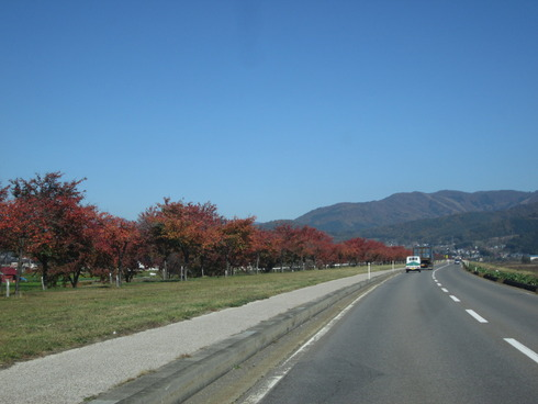 IMG_7876