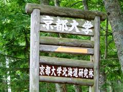 京大演習林
