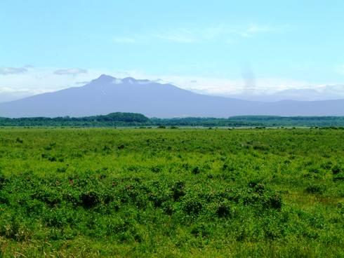 斜里岳と草原