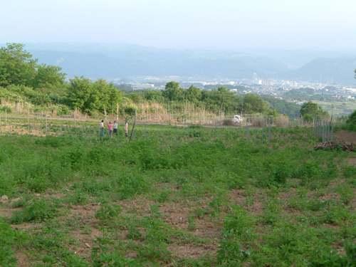 東御市と畑
