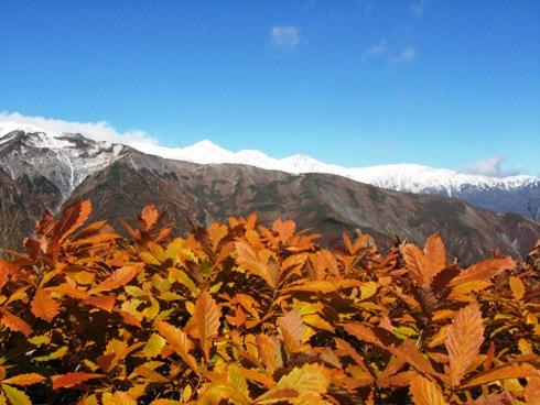 白馬三山と紅葉