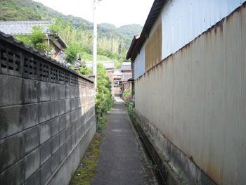 画像 061-1