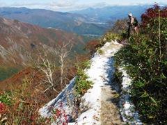 細い登山道