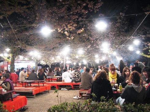 お花見(円山公園)