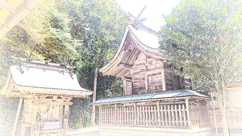 14091_赤野八幡神社