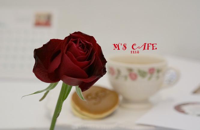 cafe11272028