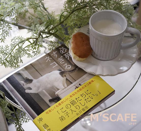cafe0919