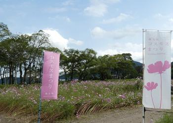 kosumo2