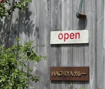 hachi2