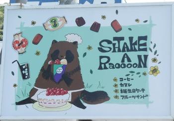 shake1