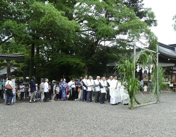 tosawa8